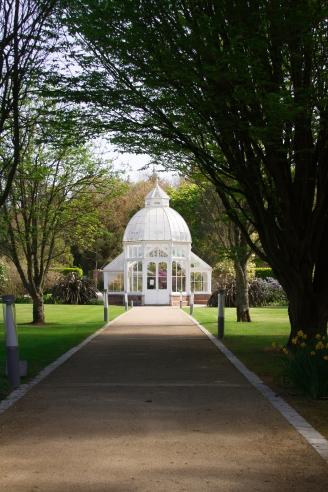 Malahide gardens hothouse